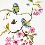 """Cherry Blossom & Blue Tits"" by Janet Sirrell"