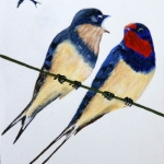 """Swallows"" by Christine Riley"