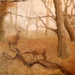 """Deer in New Forest"" by Frances Wheatley"