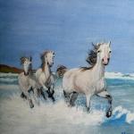 Horses on Show (Carole Rigler)