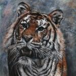 Tiger (Rafe Sirrell)