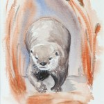 Otter with attitude (Dee Jennings)