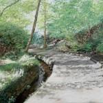 Path down Branksome Chine(Frances Wheatley)