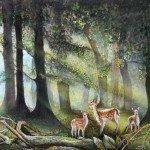 New Forest(George Naden)