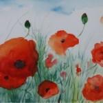 Poppies(Heather Toms)