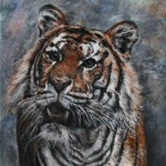 Tiger(Rafe Sirrell)