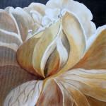 """""""Magnolia"""" by Carole Rigler"""