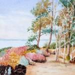 """""""Brownsea Island"""" by Ginette Jones"""