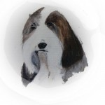 """""""Bearded Collie"""" by Priscilla Young"""