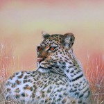 """""""Leopard"""" by George Naden"""