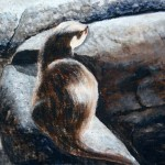 """""""Water Otter"""" by David Reeves"""